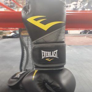 Everlast 10 ounce gloves