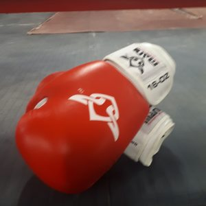Mani 16oz Boxing Gloves