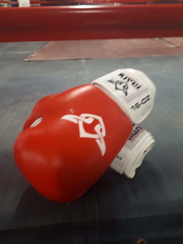 Mani 16oz Boxing Gloves